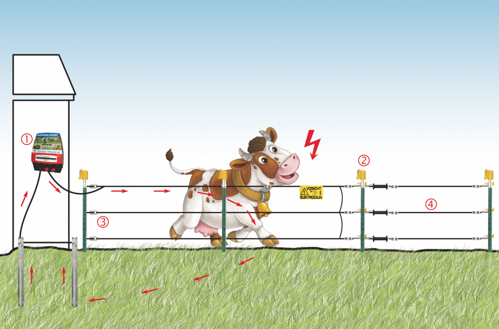 E-fence with cow graphic