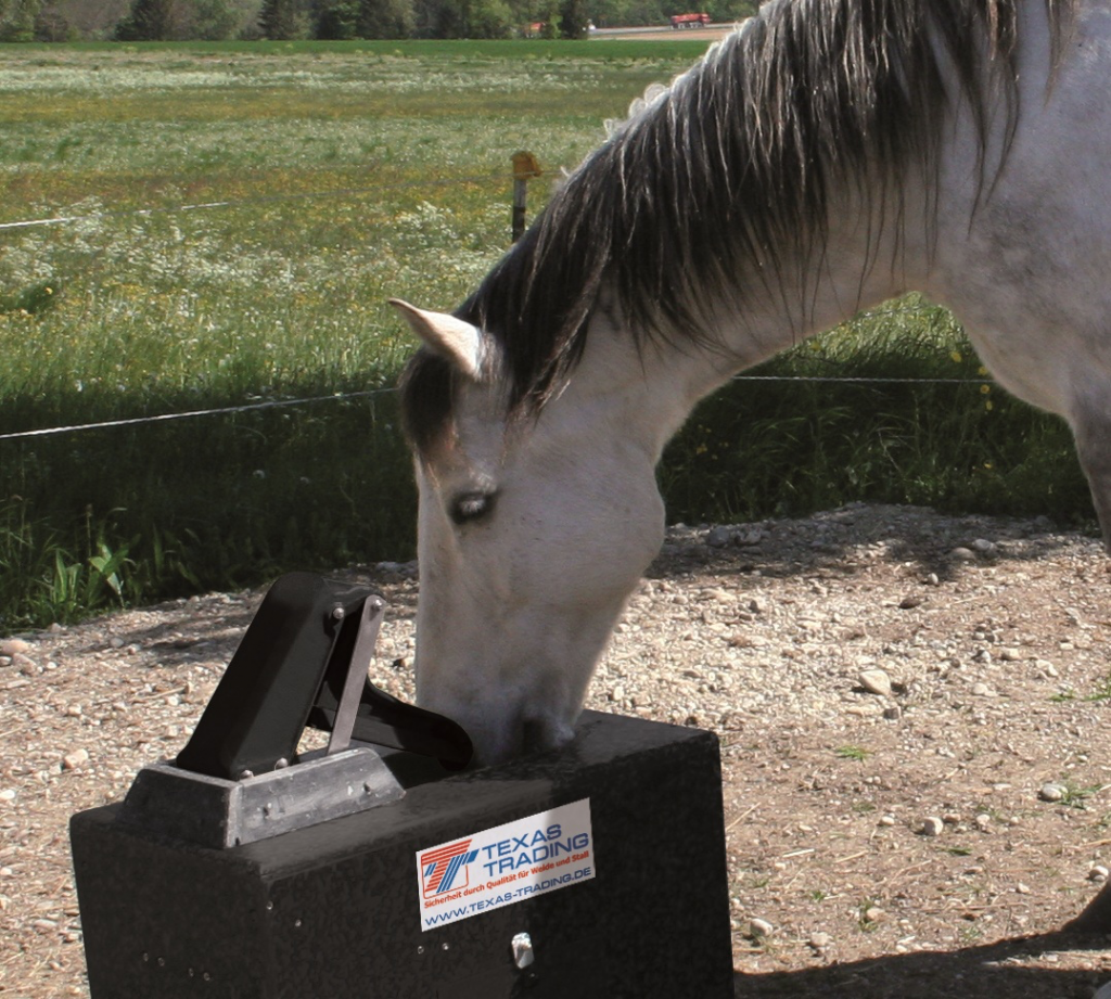Thermo Spring with Horse